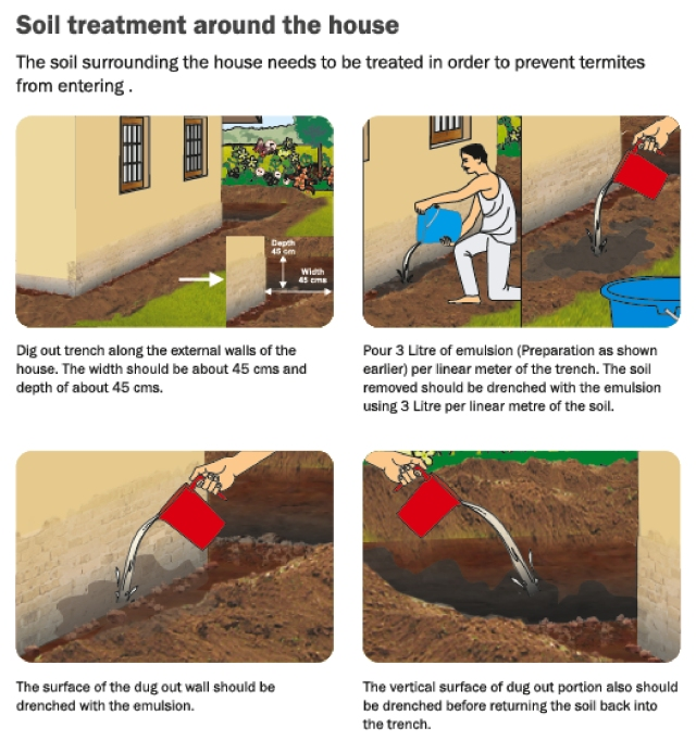 How To Use Terminator Structure Preservative End Of Termites